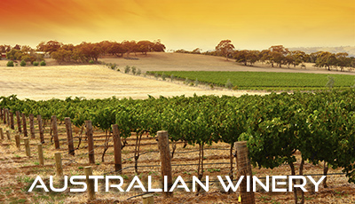 WineTrade-AustralianWinery